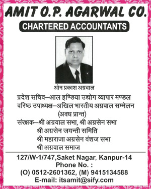 Amit OP Agarwal & Co. , Charted Accountant